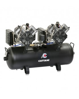 Компрессор на 5-6 установок, 2 двигателя по 2 цил., 2 осушителя, ресивер 100л, 320 л/мин (1-фазный)
